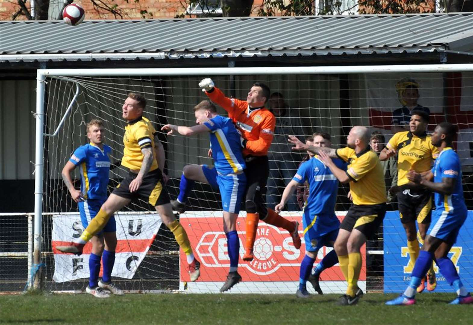 FOOTBALL: Tulips keeper staying for 2019/20 season