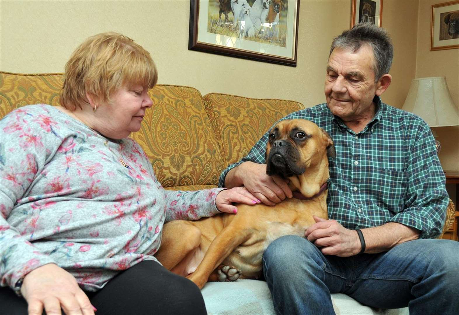 New home for TV's Maisie with Surfleet couple Jill and Trevor