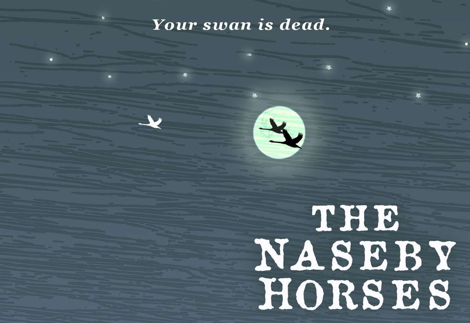 BOOK OF THE WEEK: The Naseby Horses by Dominic Brownlow