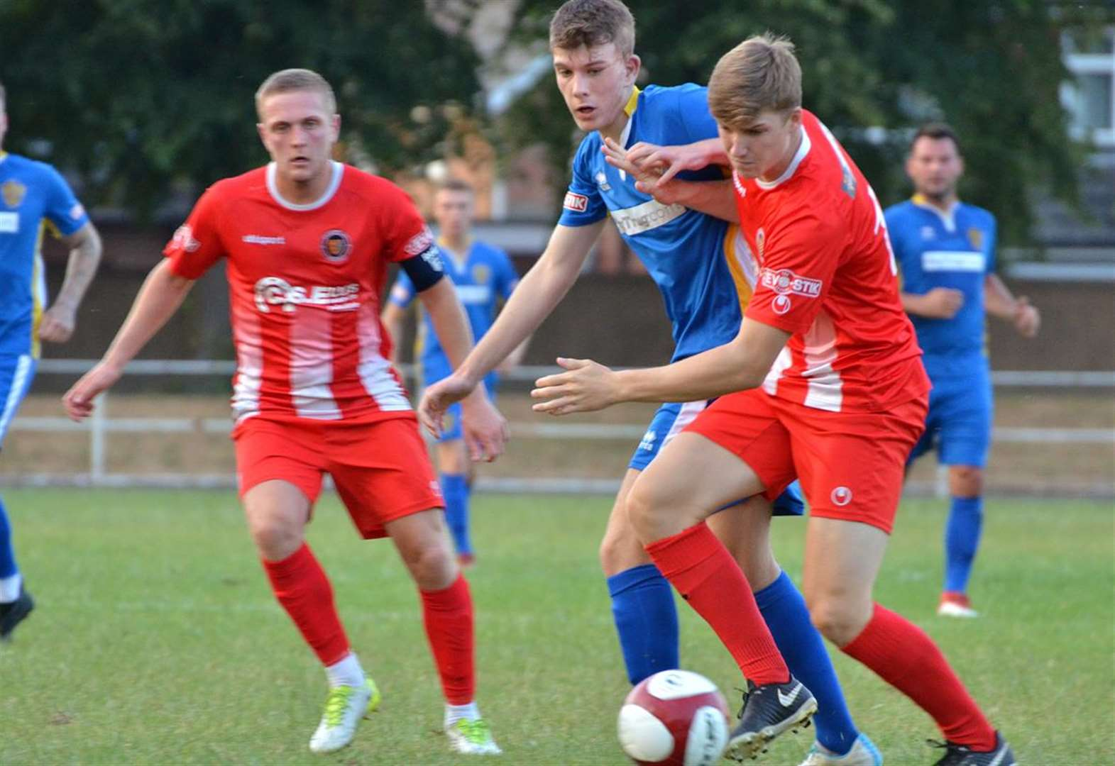 FOOTBALL: Tulips set for Daniels derby