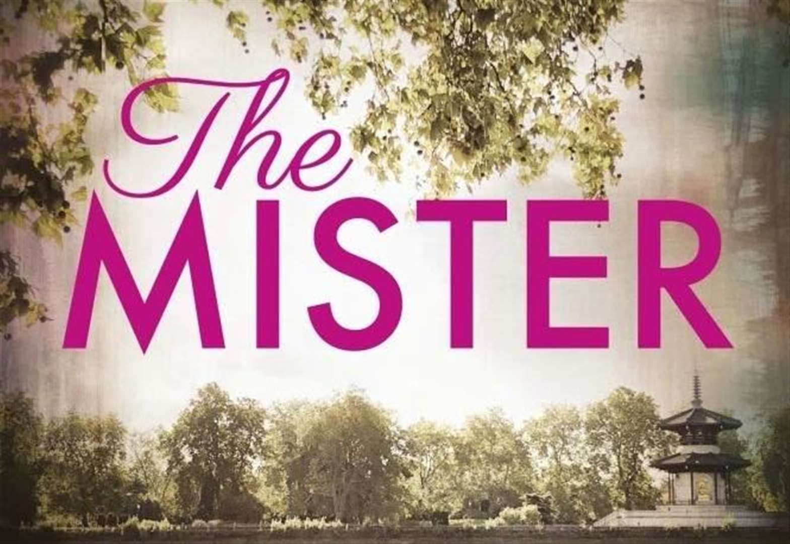 BOOK OF THE WEEK: The Mister by E L James