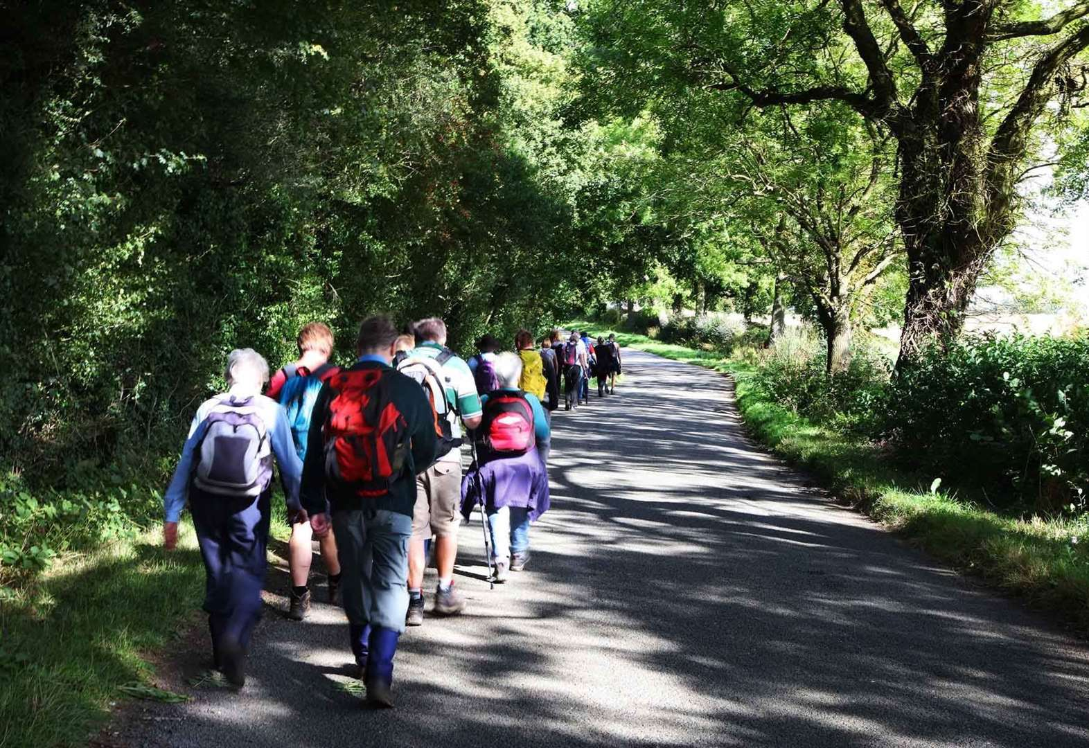 Here's what you need to know as the South Lincolnshire Walking Festival begins