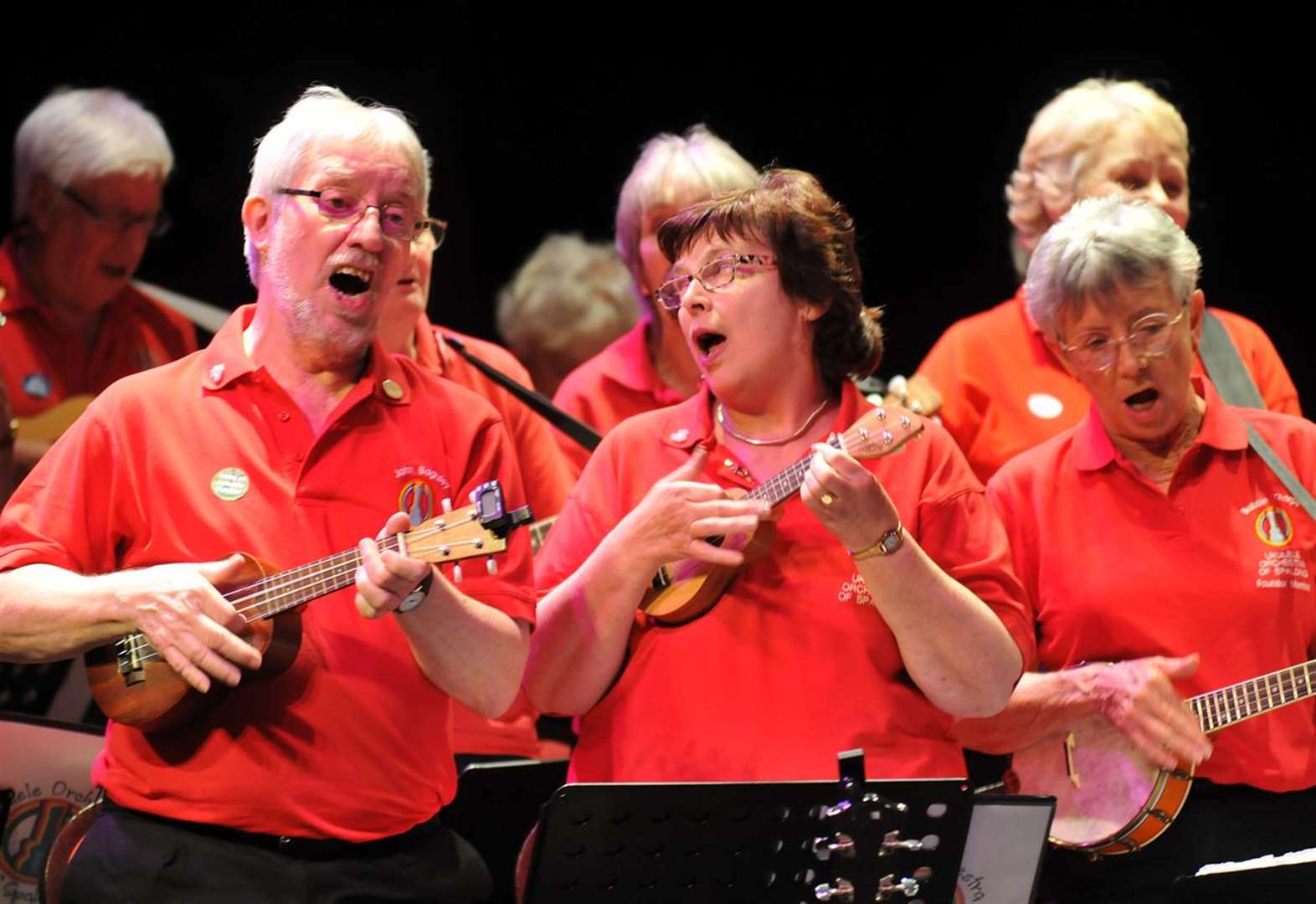 PICTURE GALLERY: Ukulele Orchestra of Spalding 10th anniversary concert