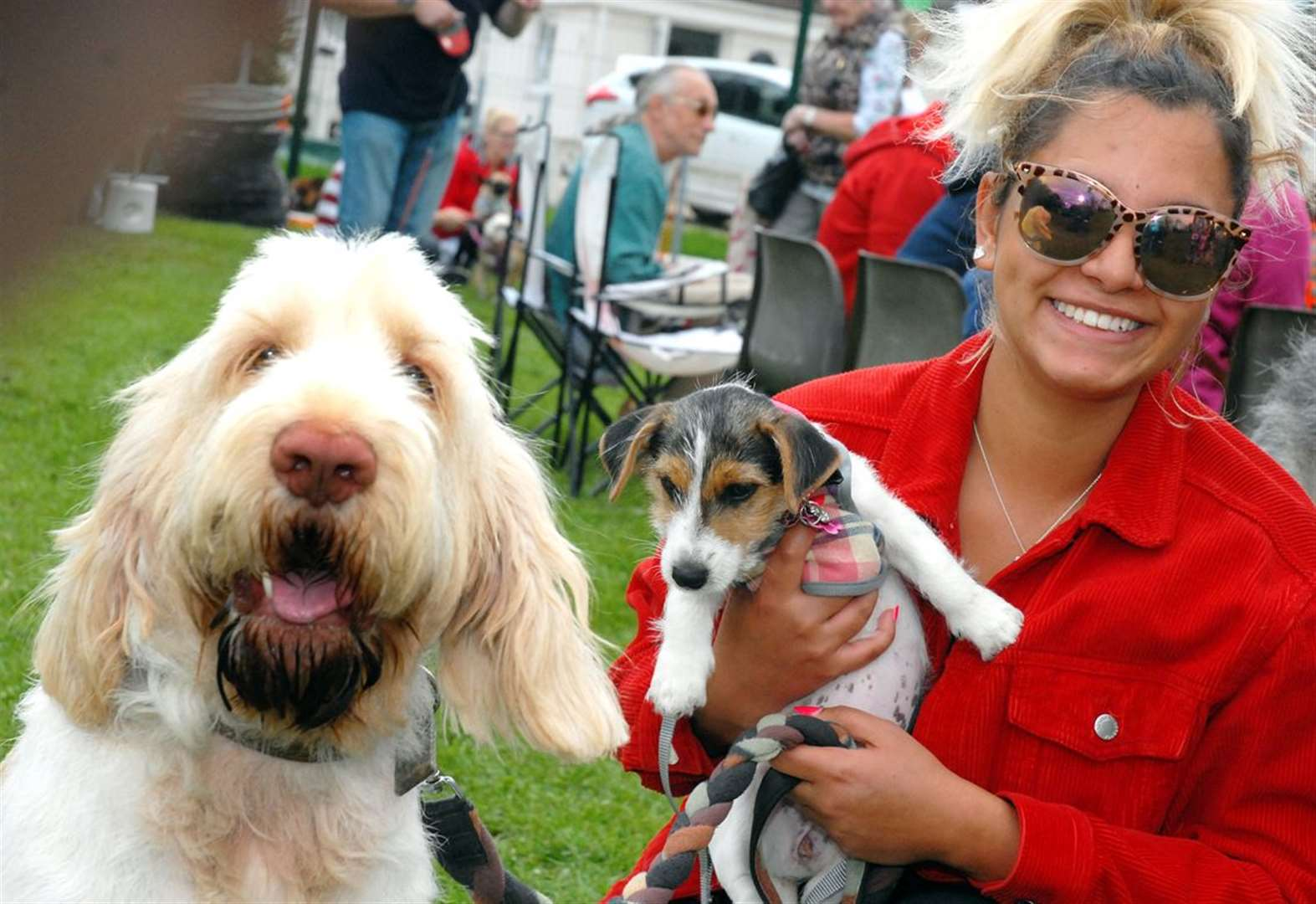 Canine capers raised funds to help dogs find new homes