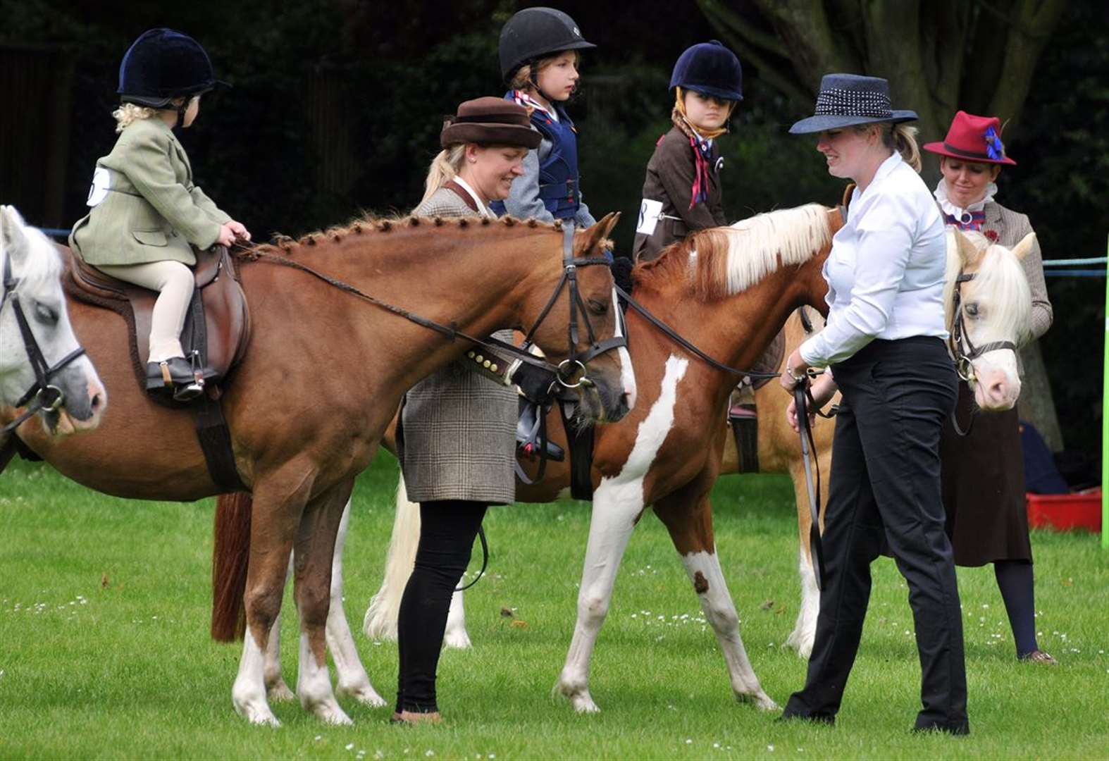 Long Sutton Horse and Pony Show 2019 gallops to another success