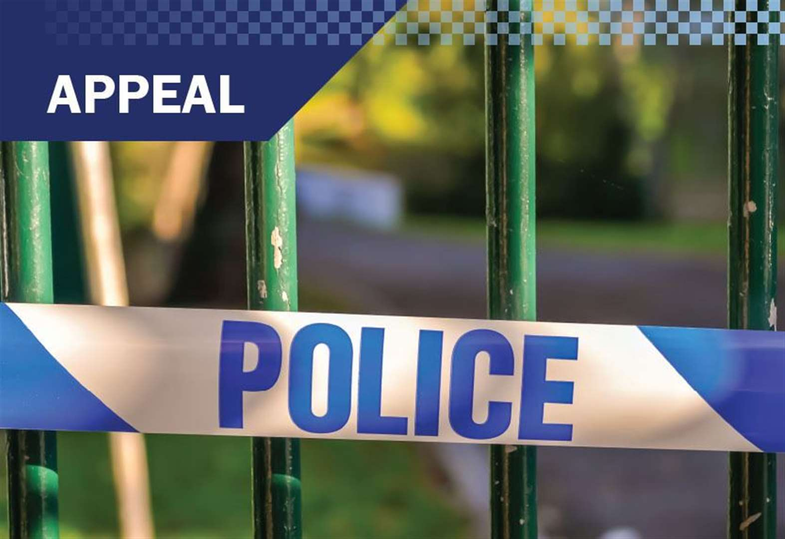 Appeal after attempt to kidnap woman