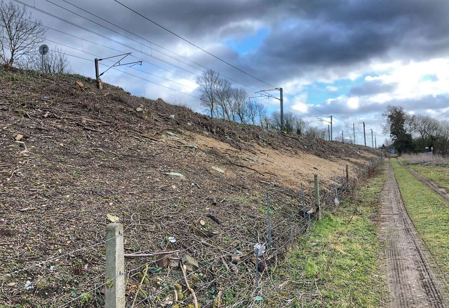 Calls to minister to stop this 'destruction' of vegetation along our rail tracks by Network Rail