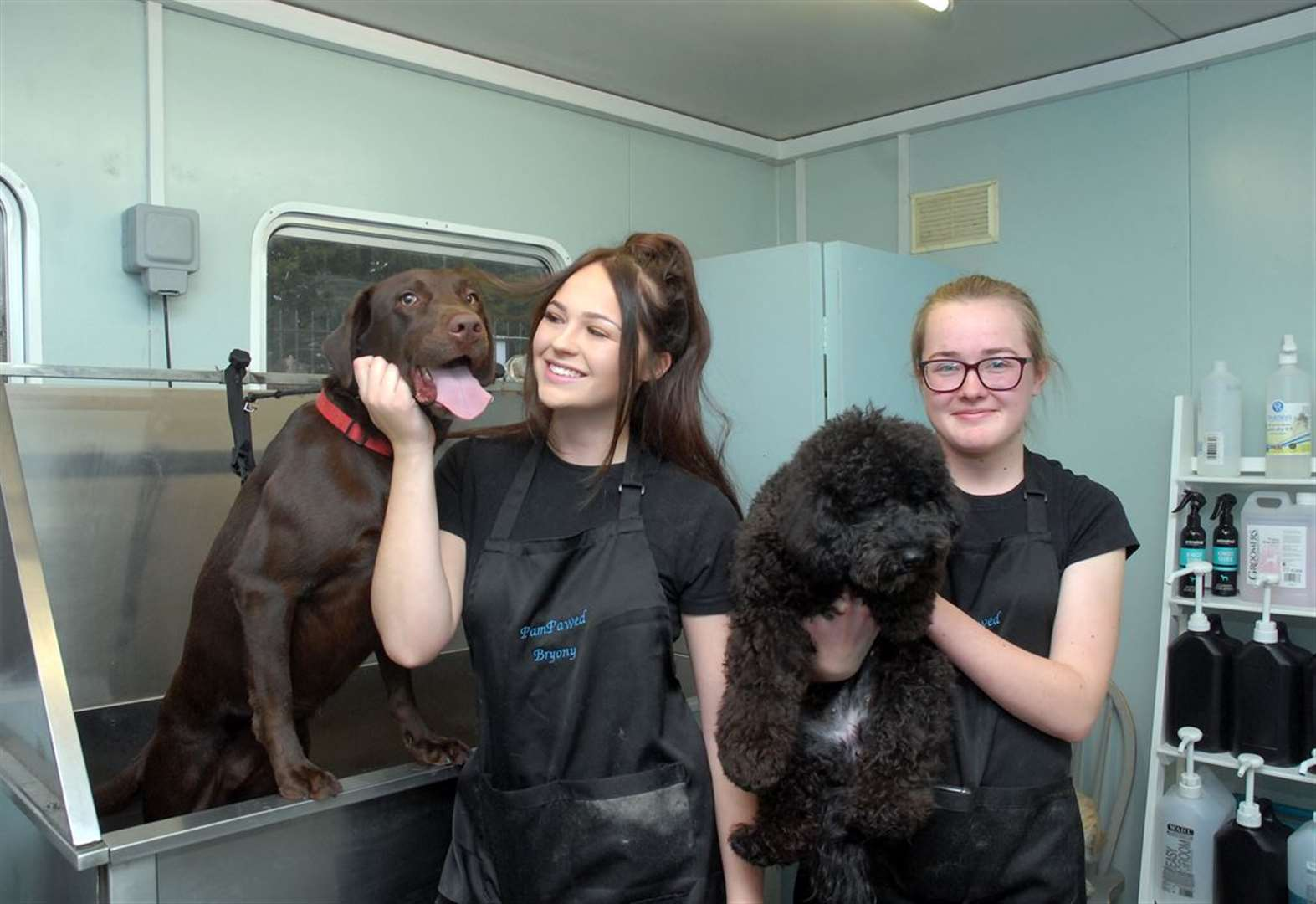 Parlour pampering man's best friends