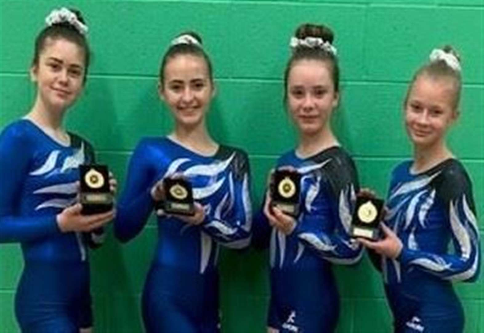 GYMNASTICS: Academy aces qualify for nationals