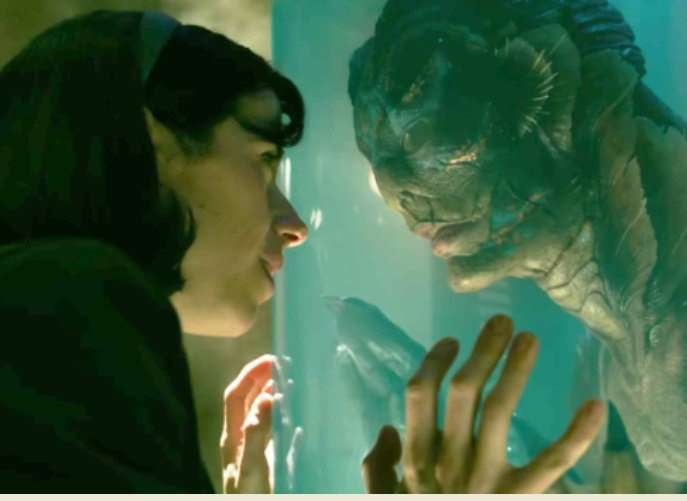 The Shape of Water has been nominated for 13 Academy Awards.