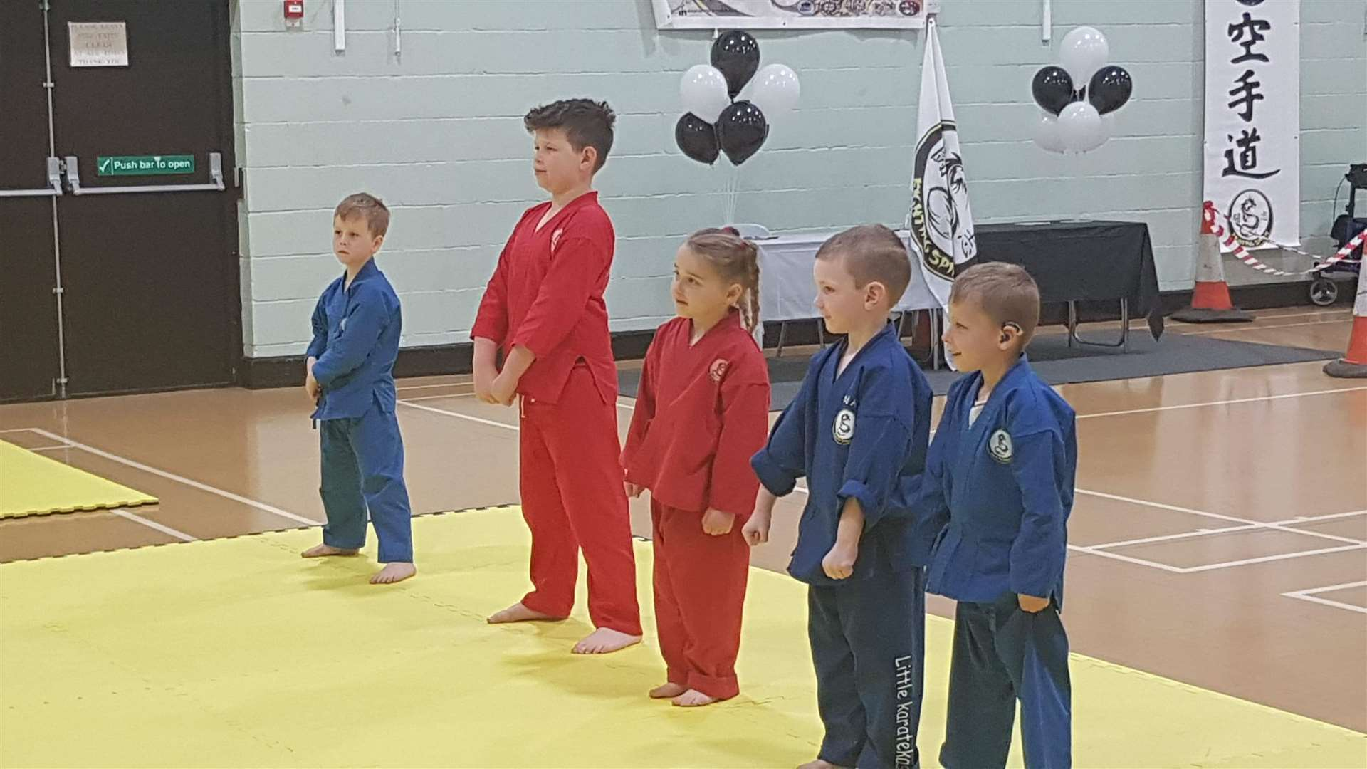 Successful Fighting Spirit Club youngsters at their gradings (11855707)