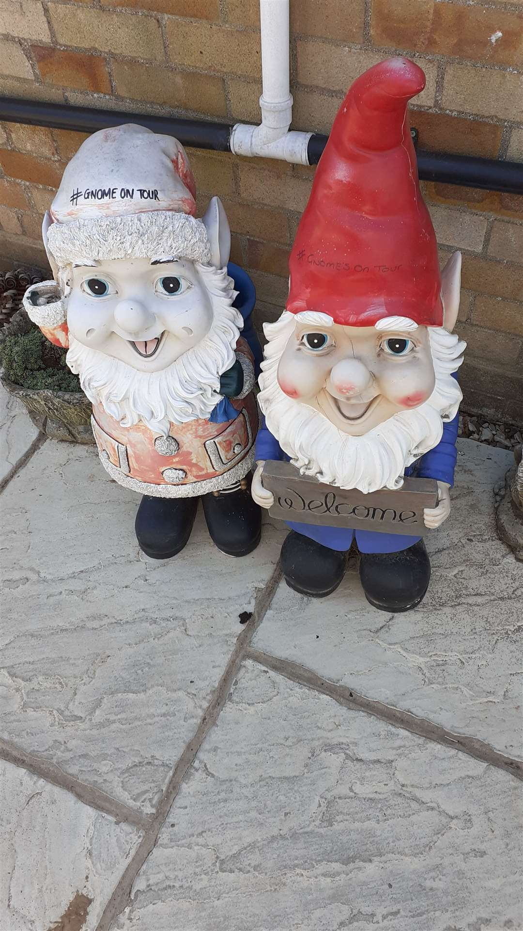 Gnomes on tour in Fleet (35529976)