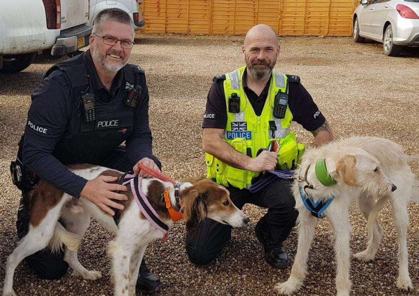 GALILEO SUCCESS: PCs Martin Green and James Perring with two dogs seized from hare coursers during the 2017-18 season.''Photo supplied by Lincolnshire Police.