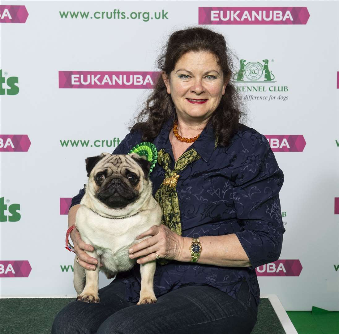 Andy Holland south holland brings home prizes from crufts - but there was