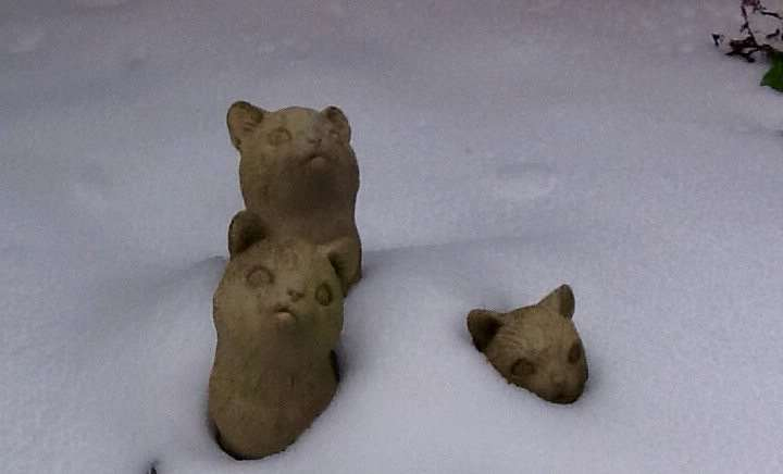 READERS' PHOTOS: John Butler took this picture of statues buried in the snow at his home in Churchill Drive, Spalding.