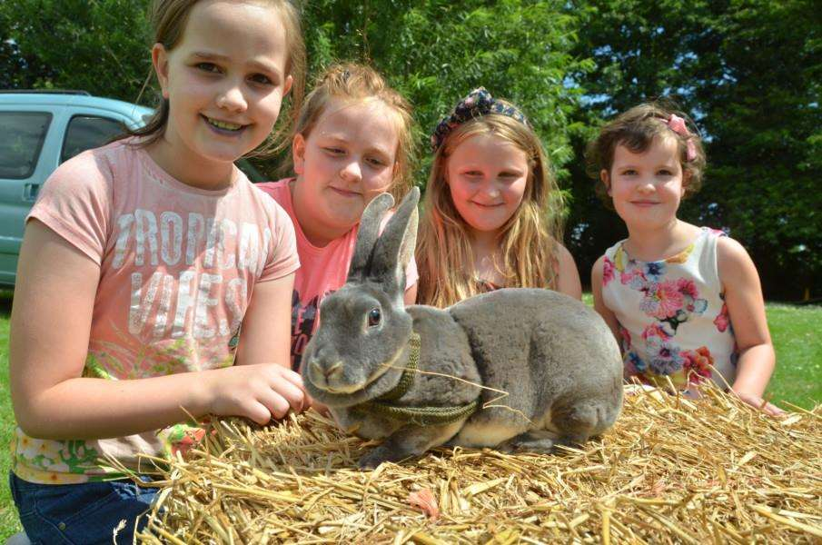 Meeting Princess the rabbit are Freya Holden, Olivia Holden, Gracie Joy and Kaylie Baxter