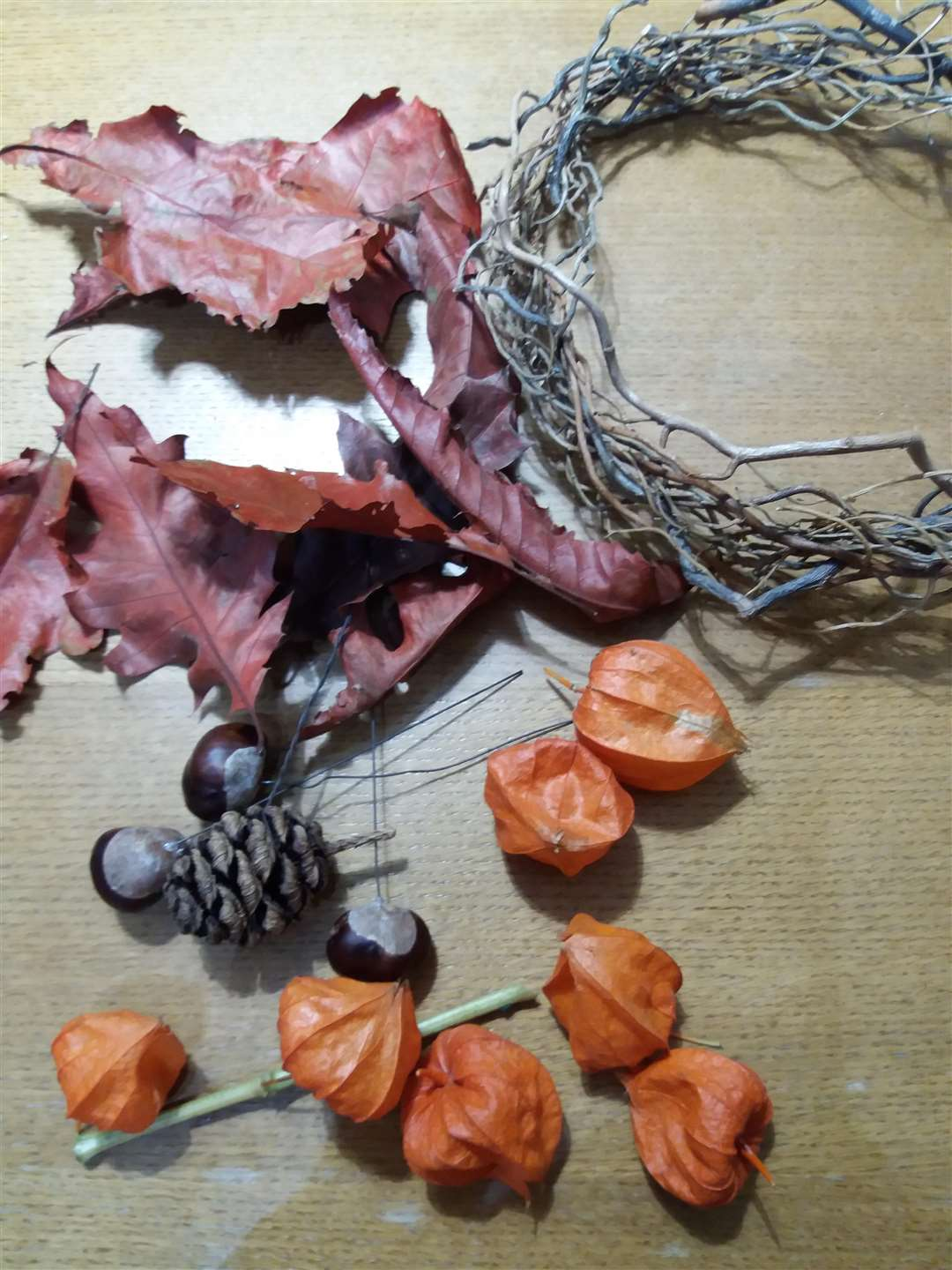Forage for items such as twings and conkers to start making your wreath. (4768505)