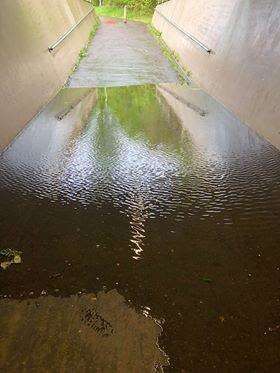 The flooded underpass at Sutton Bridge. (2047660)