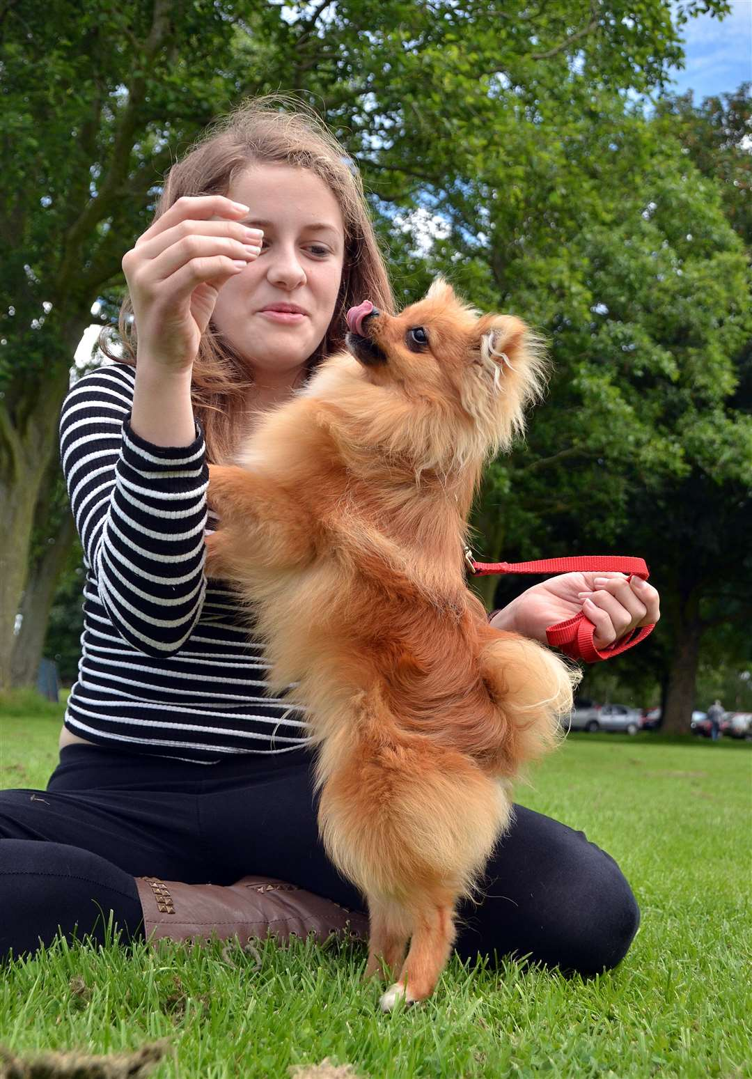Phoebe Wells and her dancing Pomeranian Casper at last year's show.