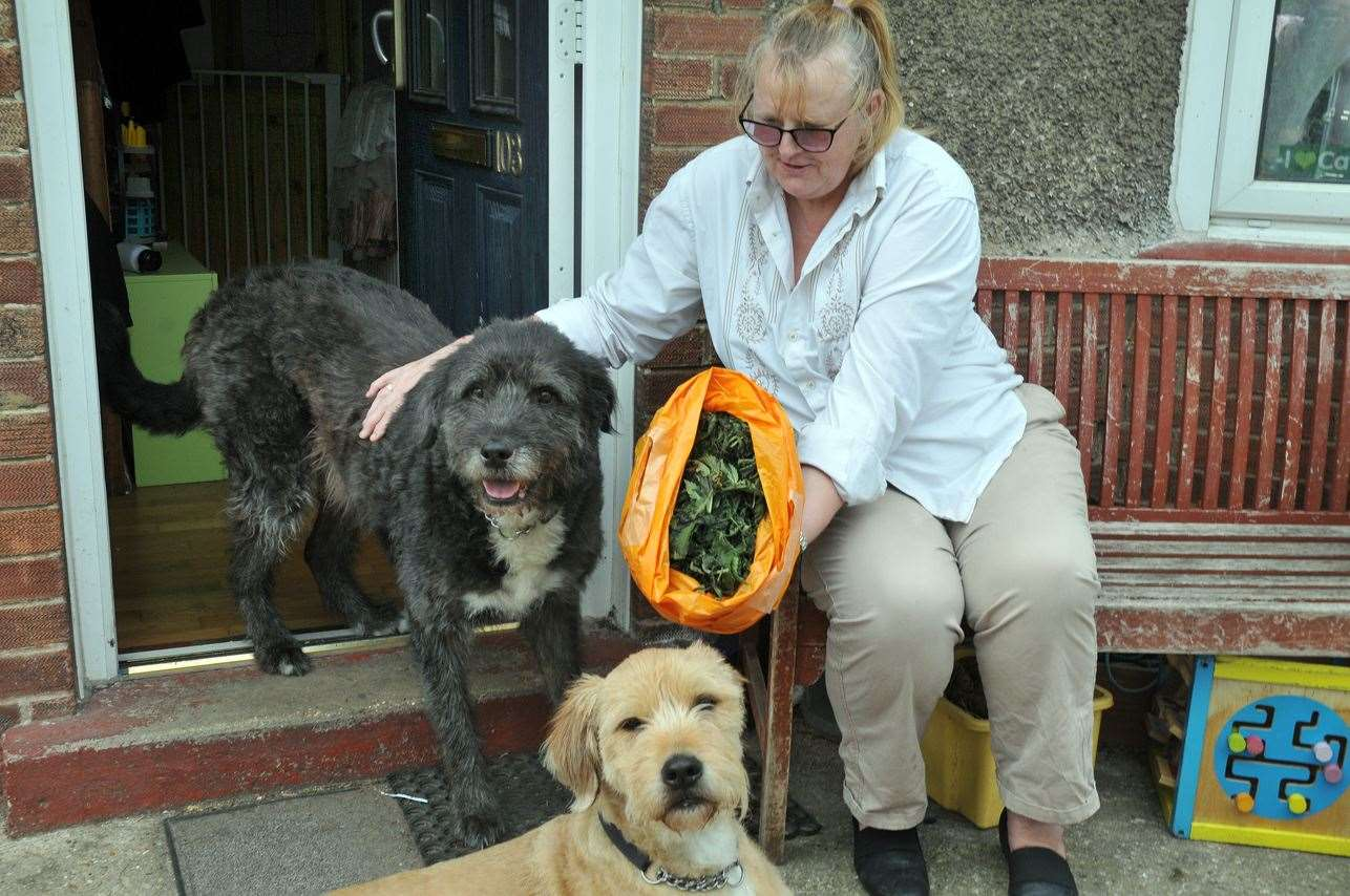 Jane Blandford with dogs Hugo and Ozzy who sniffed out the cannabis. (200519-6)