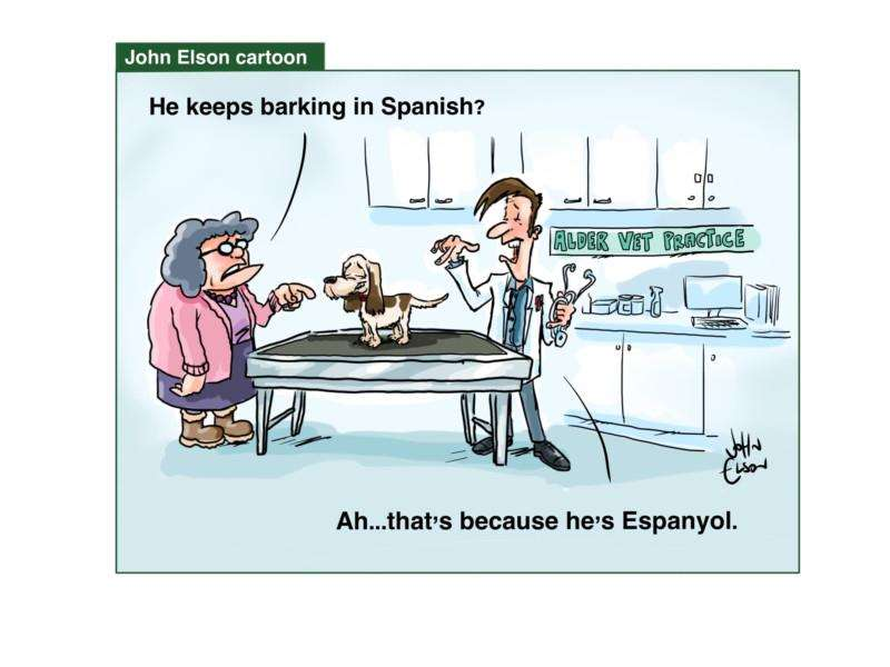 John Elson's Spalding Guardian cartoon.