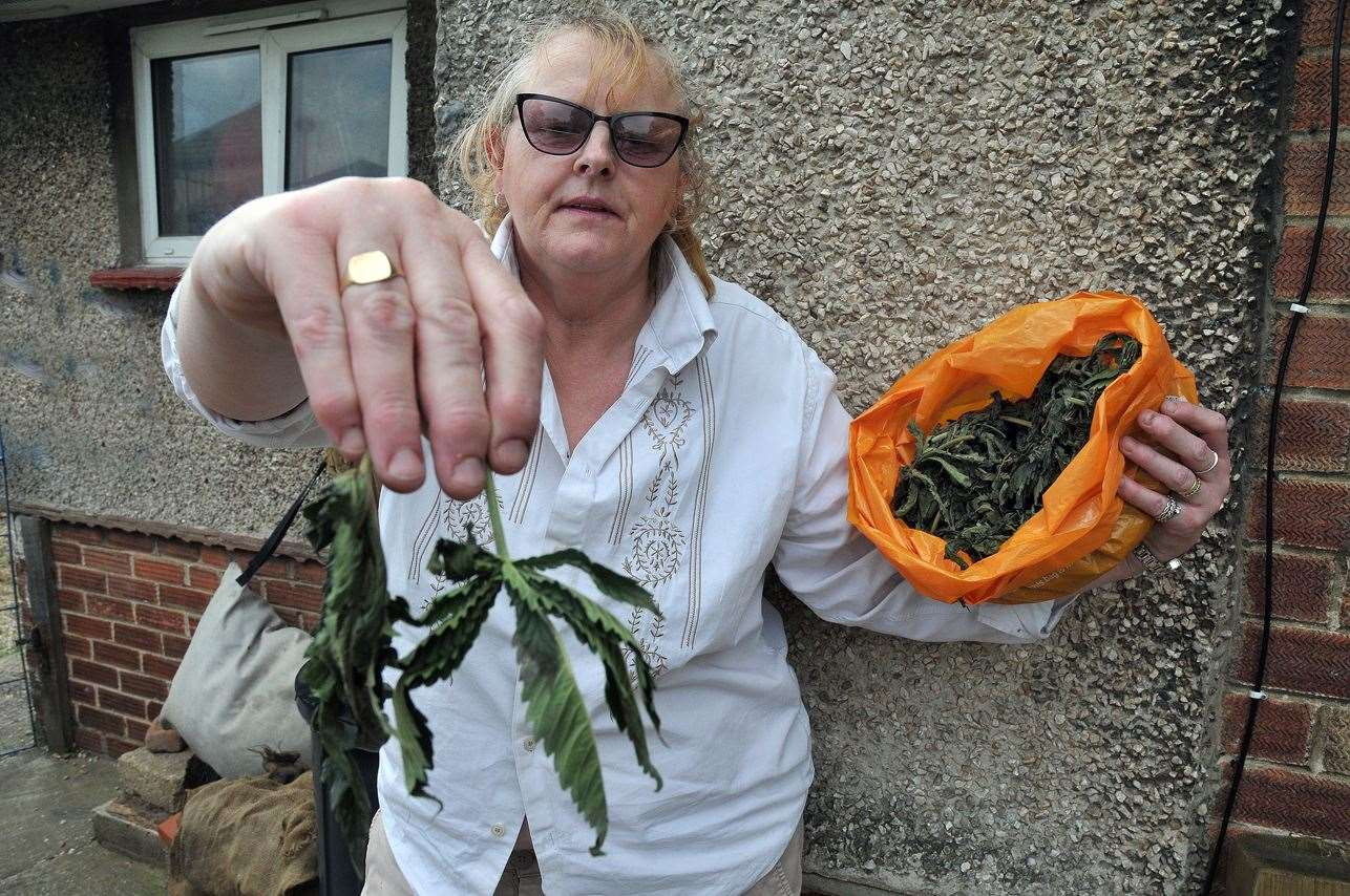 "Jane Blandford with the leaves that look and smell like ""weed"""