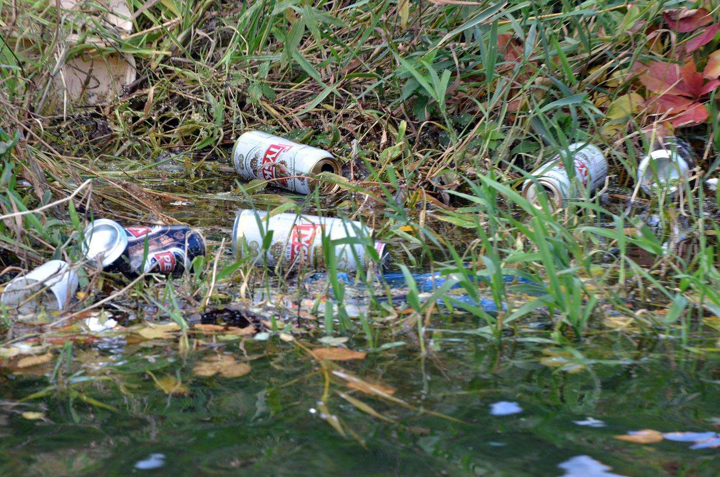Beer cans abandoned in the river (5050592)