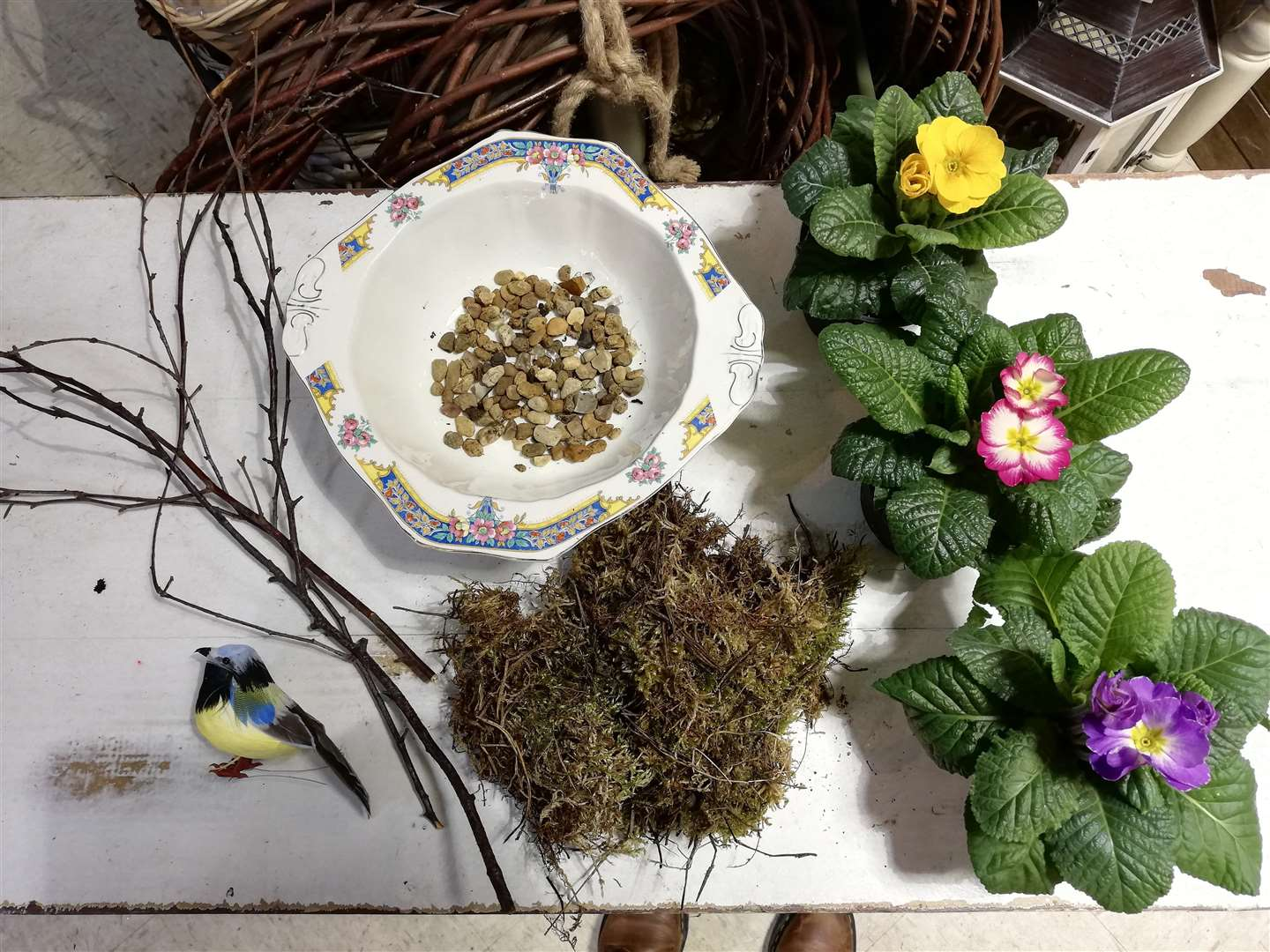You'll need an old ceramic dish, some gravel, compost, moss and twigs to start. (6387068)
