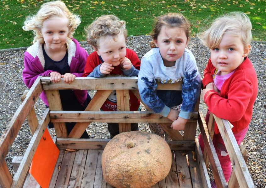 Little Pickles Nursery, Donington, donated pumpkins stolen from their garden.'Children with the one pumpkin left in their crate, - Jasmine, Amiaya, Katy and Patryk