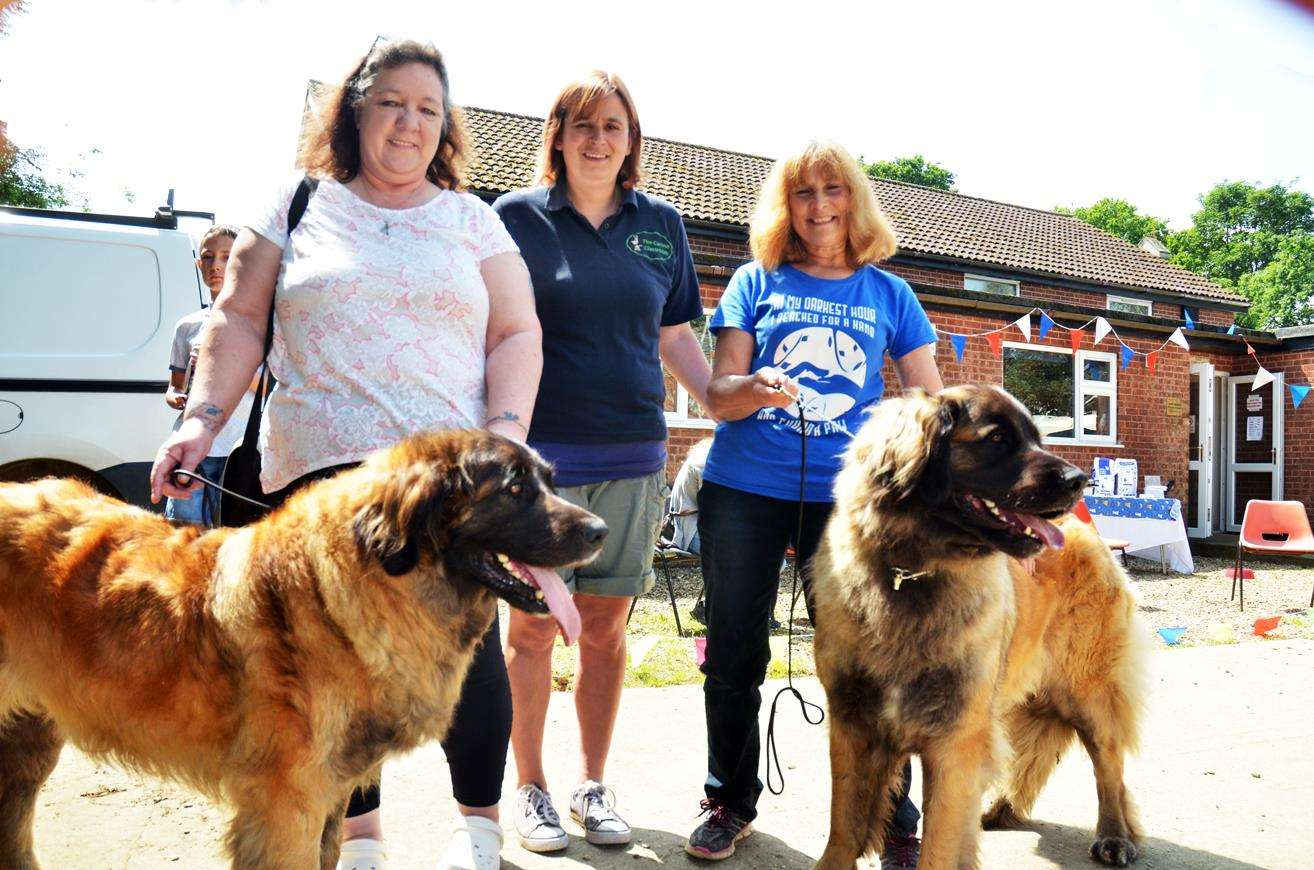Dog show organisers Mary Bradley, Sam Poole of The Canine Classroom, and Kathy May with Leonbergers Whisper and Rumour.
