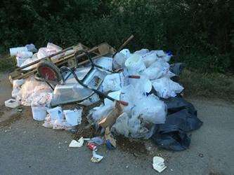 SHAMEFUL: With disgusting infringements such as this fly tipping in Weston Hills, the 'stick' approach is needed.