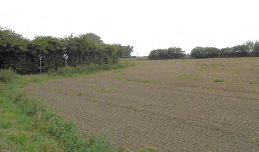 Site subject of 40-home plan off Surfleet Road, Pinchbeck