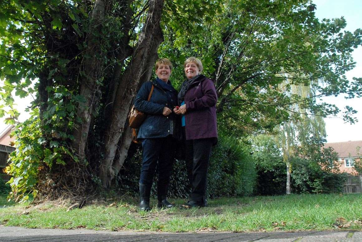 A moment to reflect: Gill Akers and Sheila Reynolds in the former orchard area where their pilot father was found dead