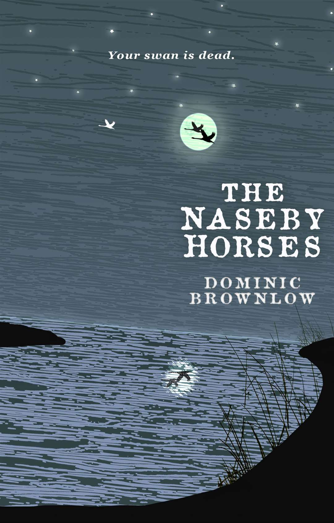 The Naseby Horses by Dominic Brownlow. Bookmark in Spalding's Book of the Week. (22579823)